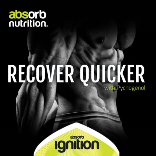 Absorb Nutrition