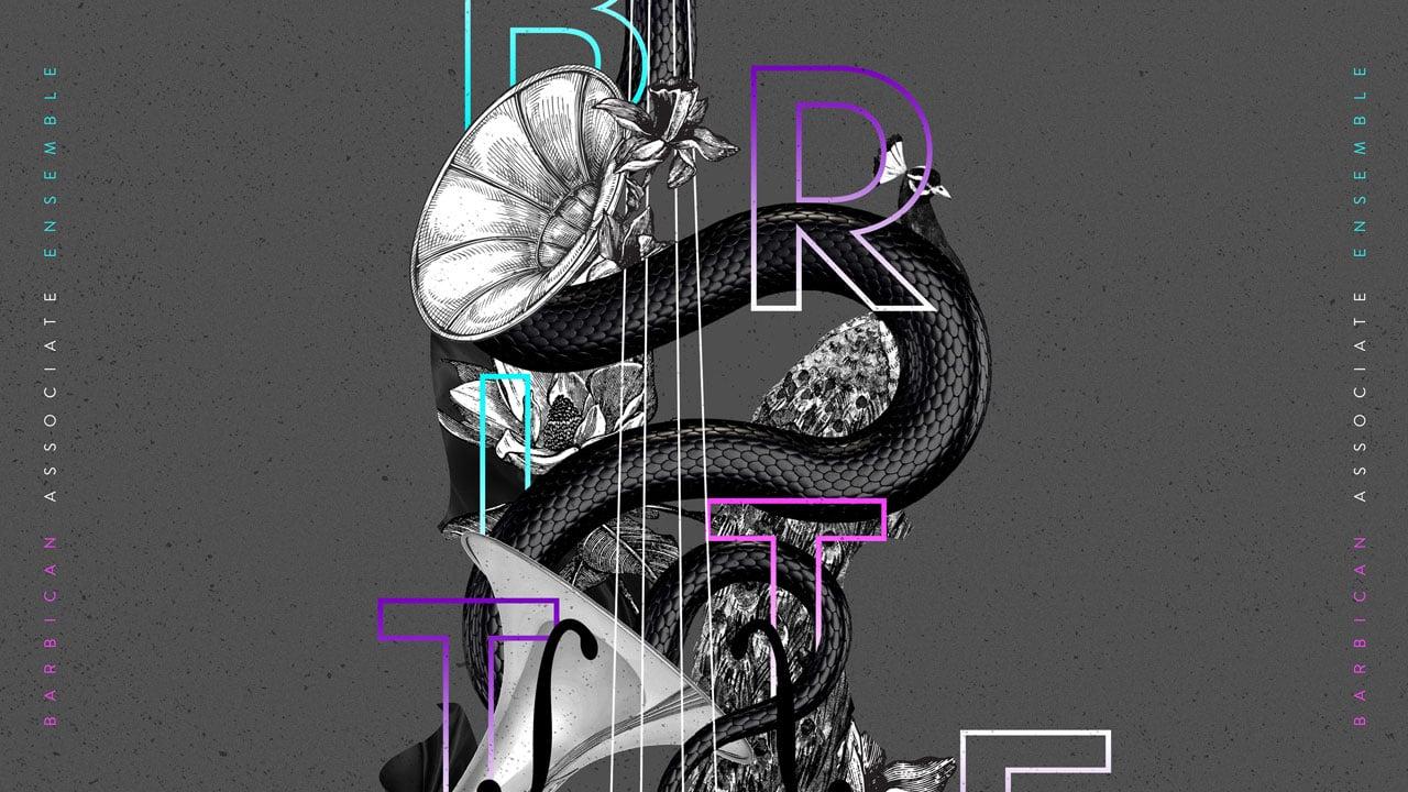 Britten Sinfonia barbican ensemble website banner design